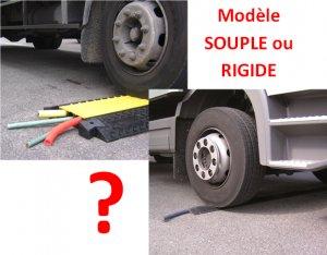 Flexible or Rigid Models ?